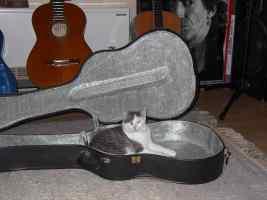 Romina Rakete im Guitar-Case